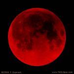 ASTROLAB.ru - Фото космоса - Луна - Красная Луна.